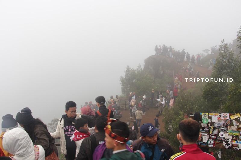 kabut di bukit sikunir