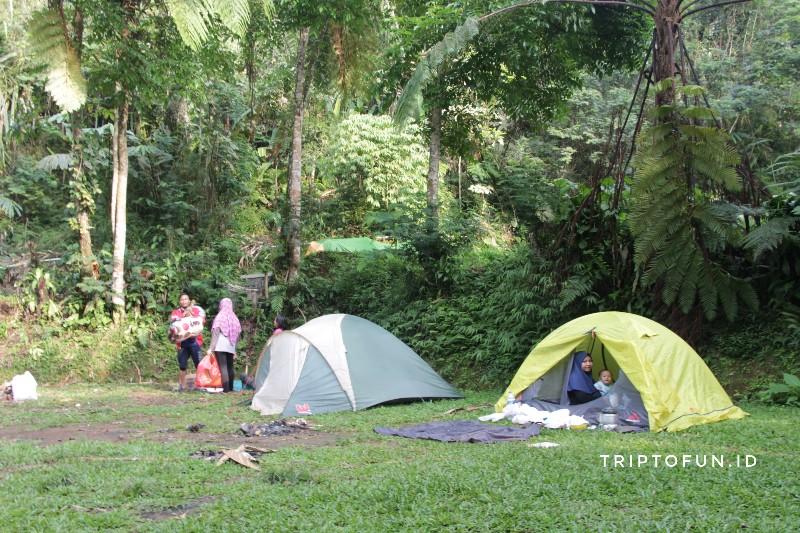 kemping di taman nasional gunung gede pangrango